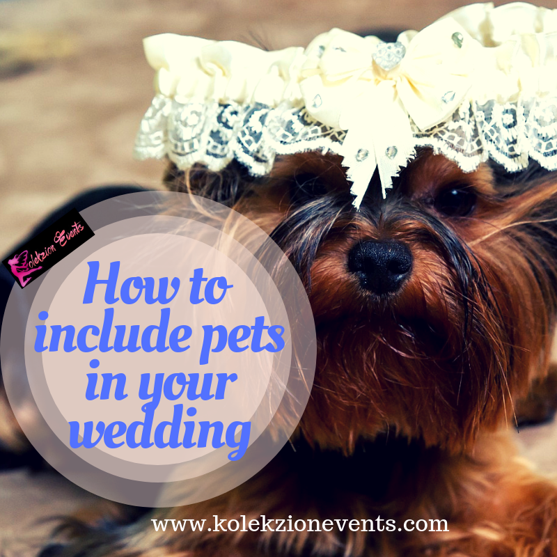 Pets on wedding day,Couple pet lovers,Wedding planning in Laguna